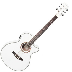 Twoman - TM-WFE Acoustic-Electric 2013